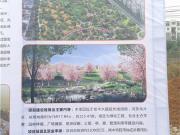 河东115亩桂中街心公园开工 这些盘尽享宜居