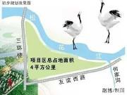 哈尔滨外滩月底开建 85折买房享群力新湿地