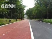虹口滨江展现海派码头文化 未来将打造城市森林