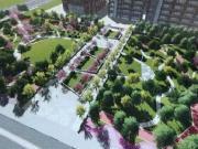 金山朱泾新增近2万平绿地 又多了一处休闲场所