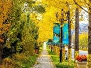 观山,观水,观澜墅,我们邀您共赏如画秋景!