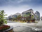 【紫悦府】市中心新中式别墅 繁华,触手可及