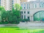 恒大绿洲——懂生活的人,会给日子来点仪式感~