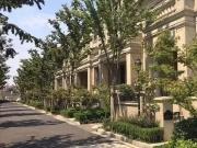 慈溪周巷文化古镇 《绿城惠园》150套私家院墅
