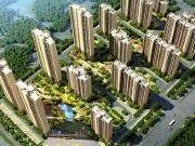 兴国碧桂园建设项目批前规划公示