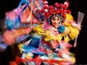 碧桂园中南·双玺:宿州非遗 国之瑰宝 举世瞩目