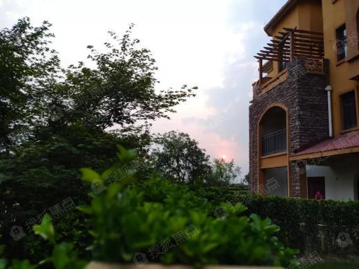 泰和·清月湖 伴山湖景别墅 臻稀发售