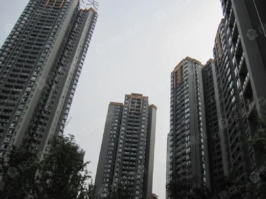 """多地公积金贷款买房遭""""嫌弃"""",刚需购房者权益如何保障"""