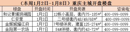 2017重庆楼市冷静开年 第一周仅4盘加推