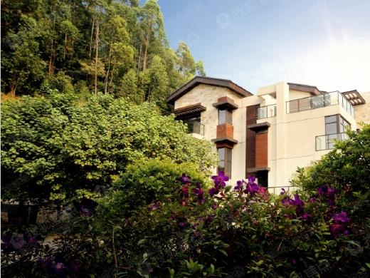 存量越来越少 广州低容积率真别墅哪里找?