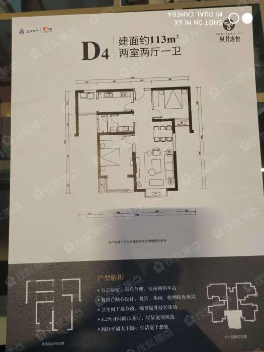 远洋合能枫丹唐悦插图(3)